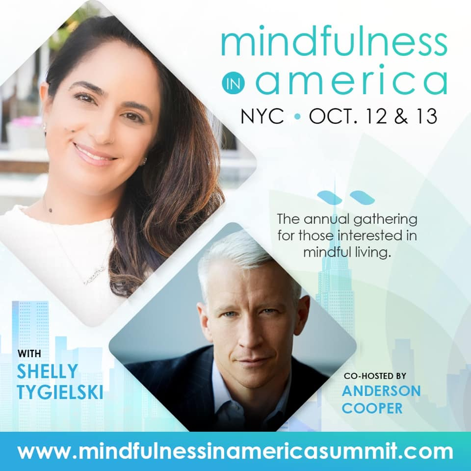 Mindfulness in America Summit in NYC